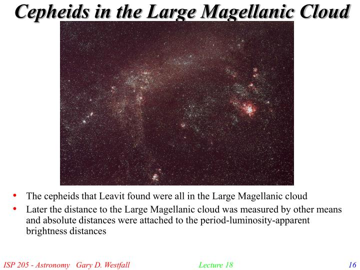 Cepheids in the Large Magellanic Cloud