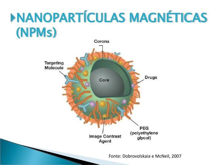 NANOPARTCULAS MAGNTICAS (NPMs)