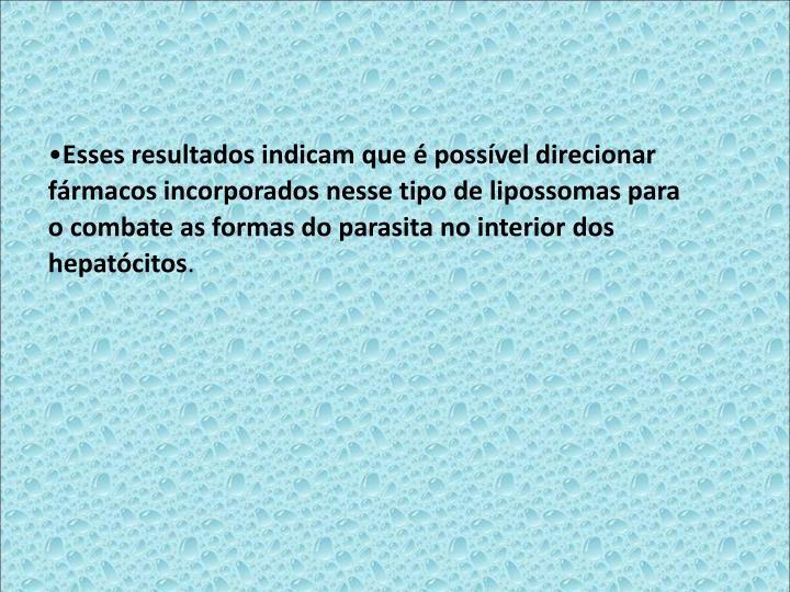 Esses resultados indicam que  possvel direcionar frmacos incorporados nesse tipo de lipossomas para o combate as formas do parasita no interior dos hepatcitos