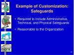 example of customization safeguards