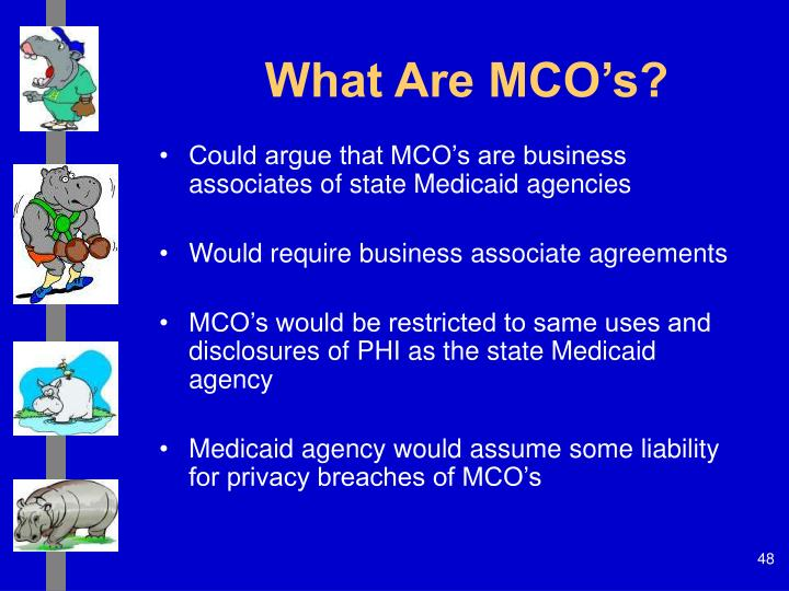 What Are MCO's?