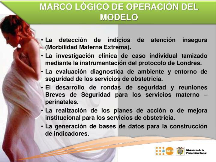 MARCO LÓGICO DE OPERACIÓN DEL MODELO