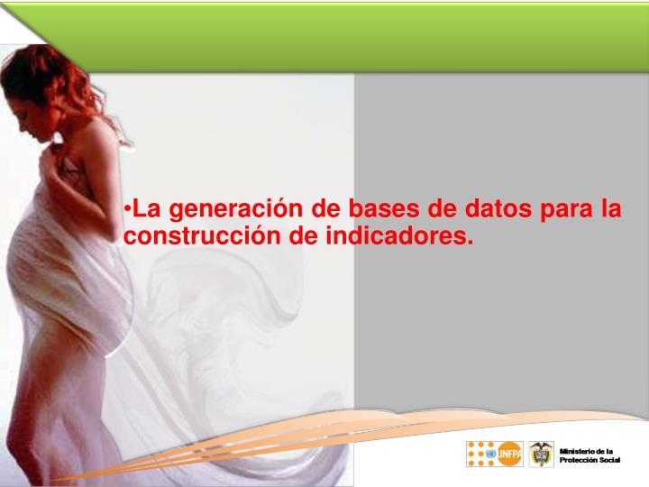 La generación de bases de datos para la construcción de indicadores.