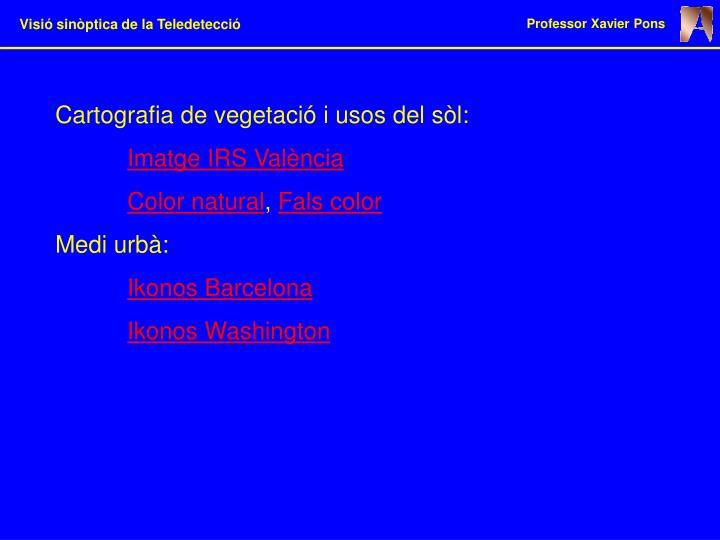 Cartografia de vegetació i usos del sòl: