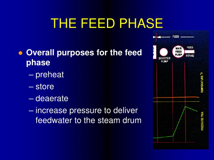 THE FEED PHASE