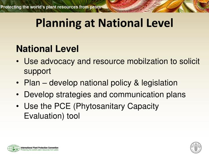 Planning at National Level