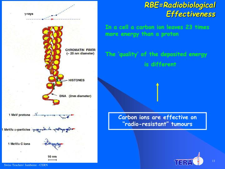 RBE=Radiobiological Effectiveness
