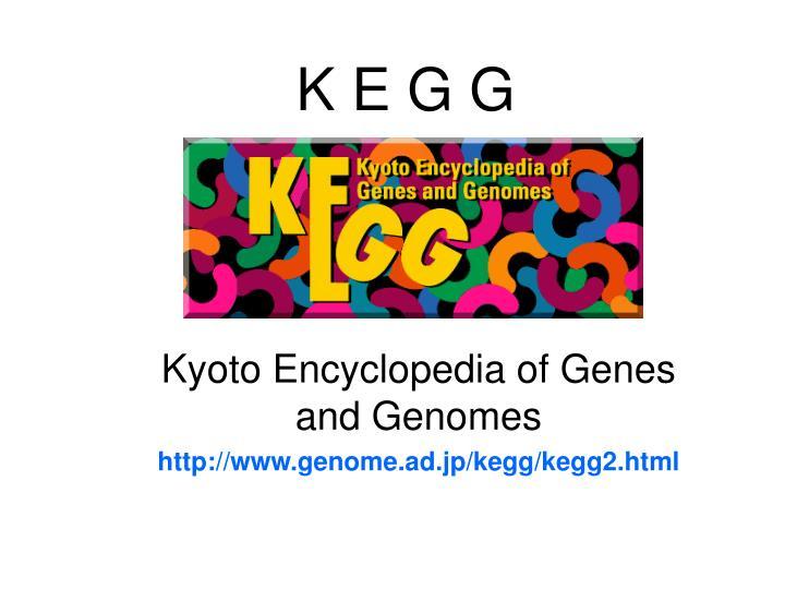 K E G G
