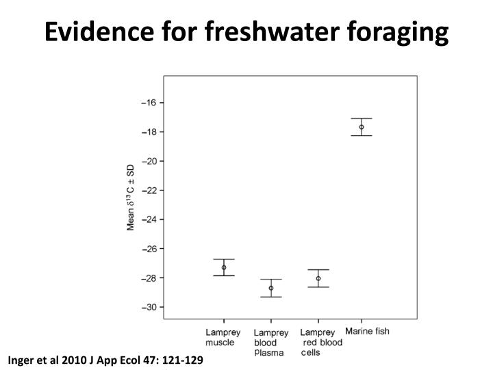 Evidence for freshwater foraging