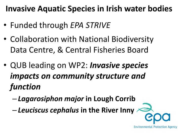 Invasive Aquatic Species in Irish water bodies