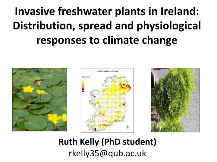 Invasive freshwater plants in Ireland: