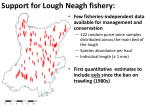 support for lough neagh fishery