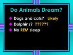 do animals dream4