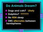 do animals dream5