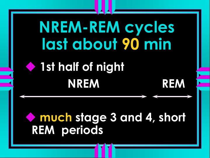 NREM-REM cycles last about