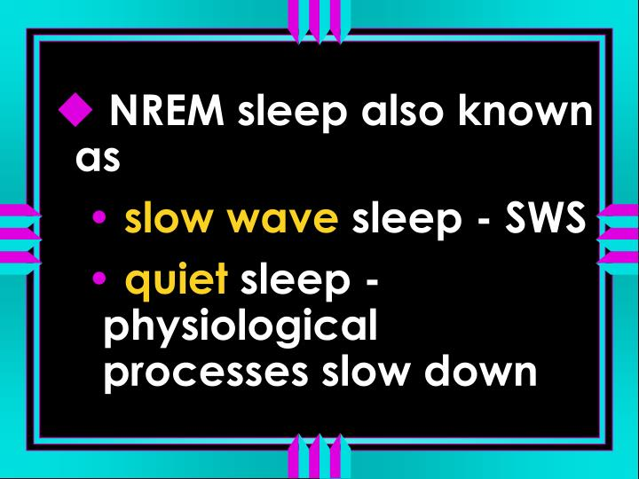 NREM sleep also known as