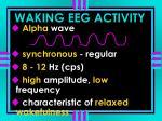 waking eeg activity