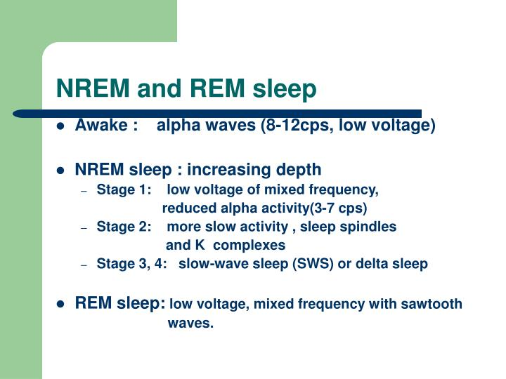 NREM and REM sleep
