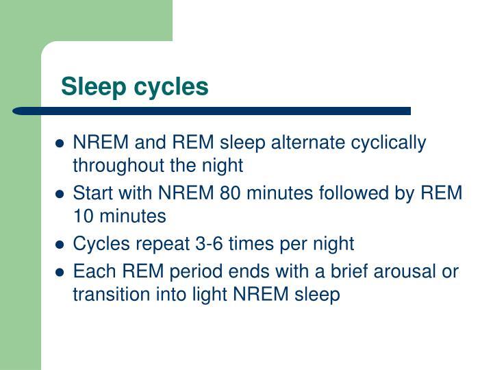 Sleep cycles