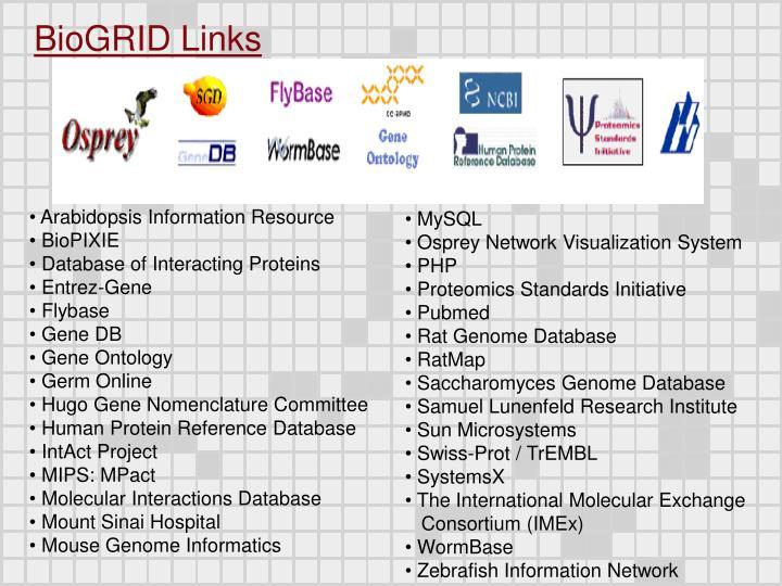 BioGRID Links