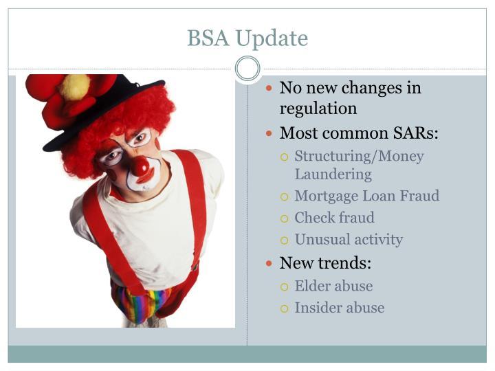BSA Update