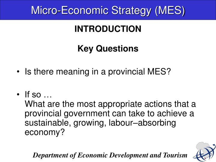 Micro-Economic Strategy (MES)