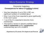 micro economic strategy6