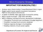 micro economic strategy8