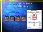 hybrid optical packet infrastructure1