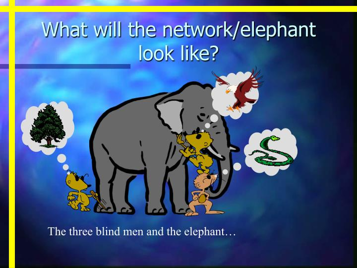 What will the network elephant look like