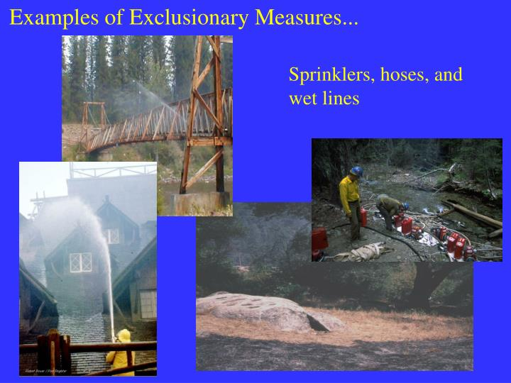 Examples of Exclusionary Measures...