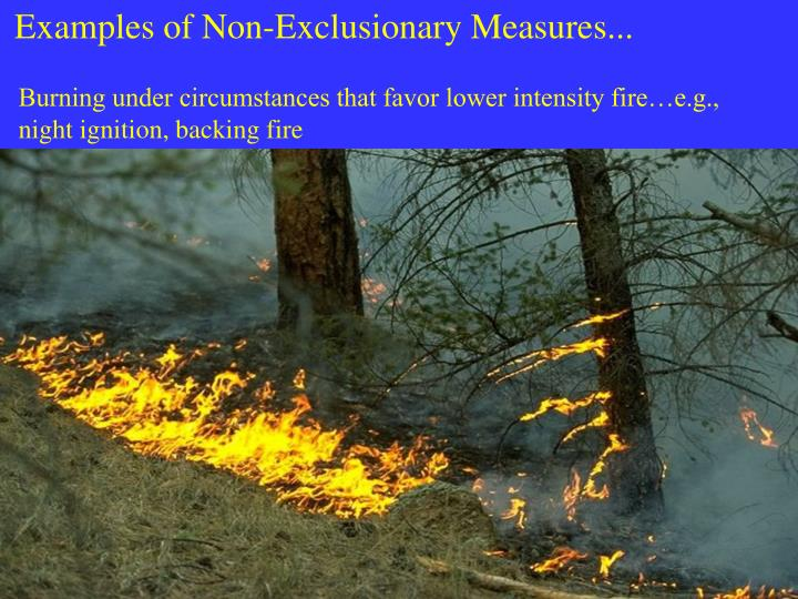 Examples of Non-Exclusionary Measures...