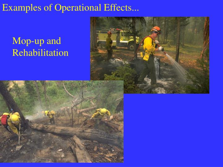 Examples of Operational Effects...