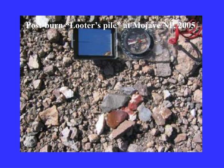 "Post-burn ""Looter's pile"" at Mojave NP, 2005"