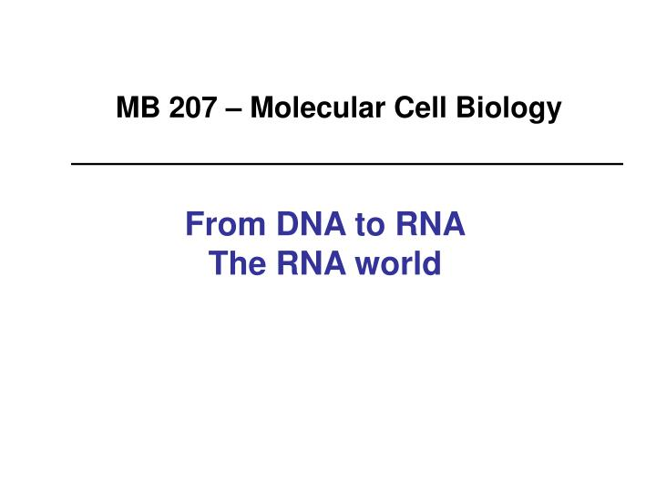 From dna to rna the rna world