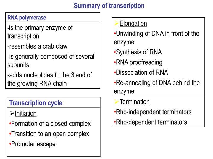 Summary of transcription