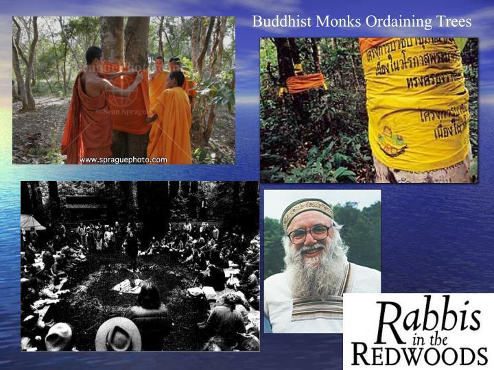 Buddhist Monks Ordaining Trees