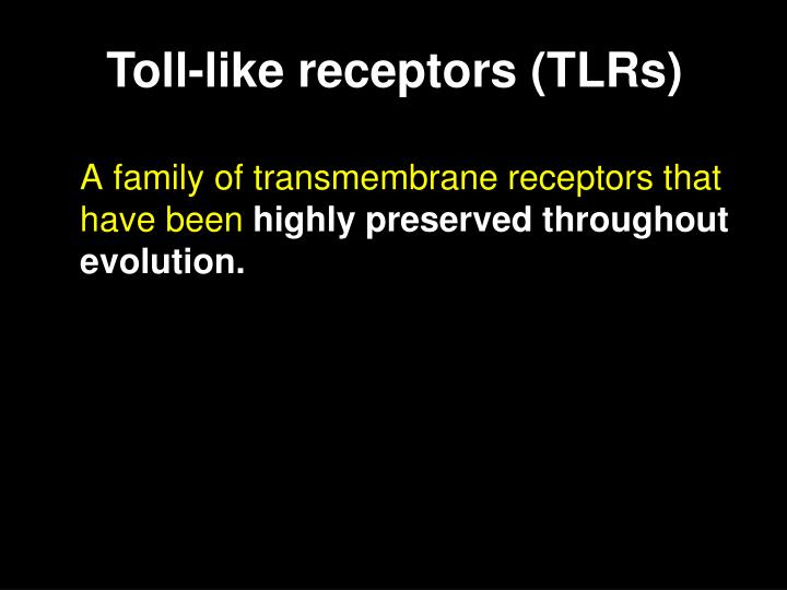 A family of transmembrane receptors that have been