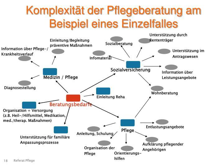 Komplexität der Pflegeberatung am Beispiel eines Einzelfalles