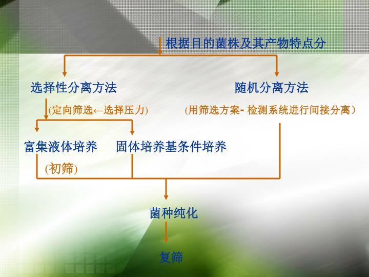 根据目的菌株及其产物特点分