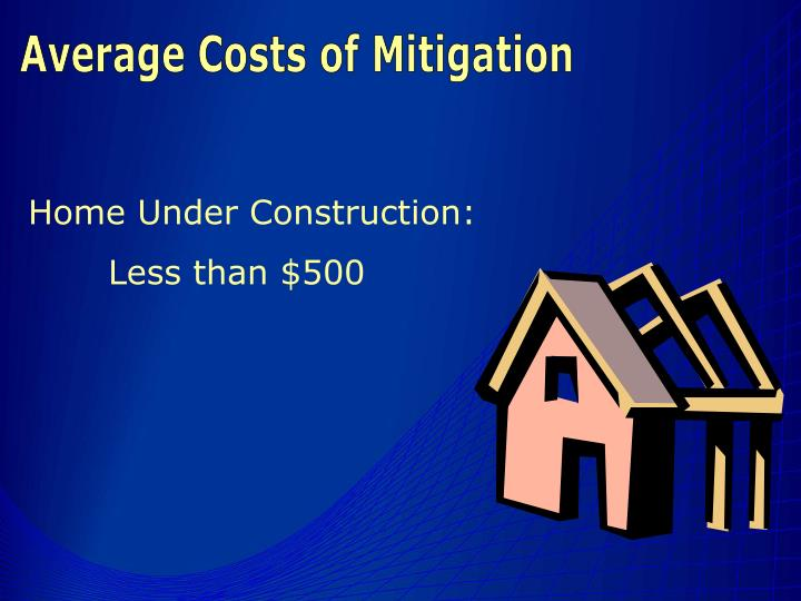 Average Costs of Mitigation