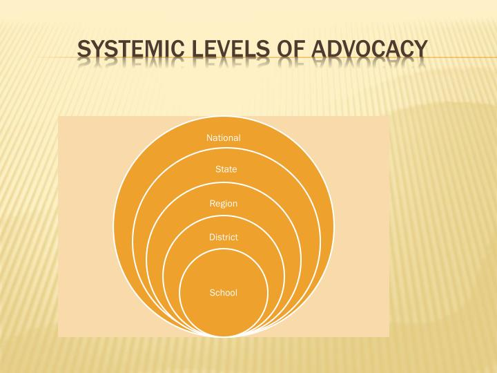 Systemic Levels of Advocacy