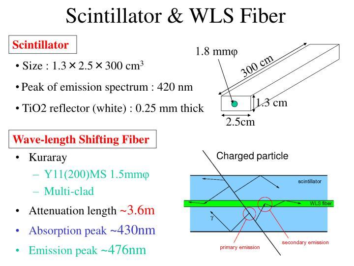 Scintillator & WLS Fiber