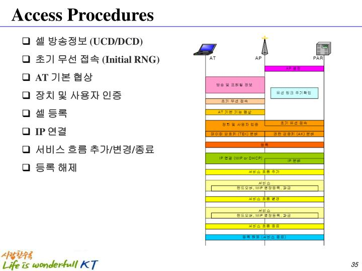 Access Procedures