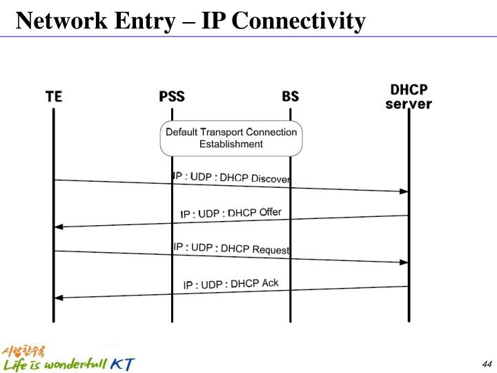 Network Entry – IP Connectivity
