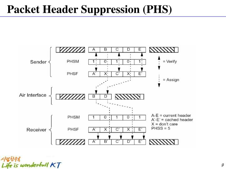 Packet Header Suppression (PHS)