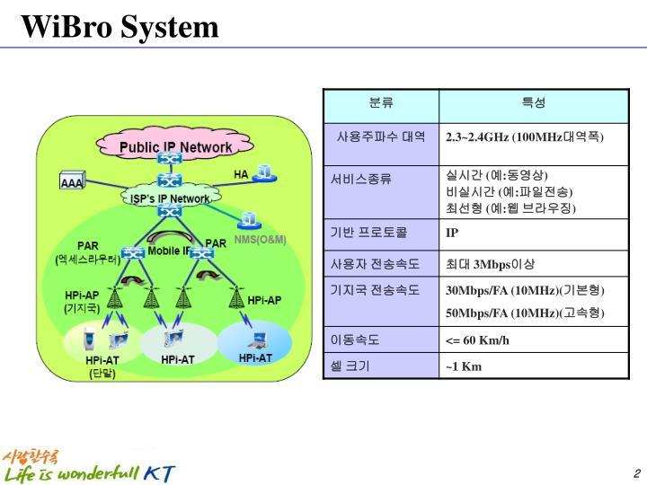 WiBro System