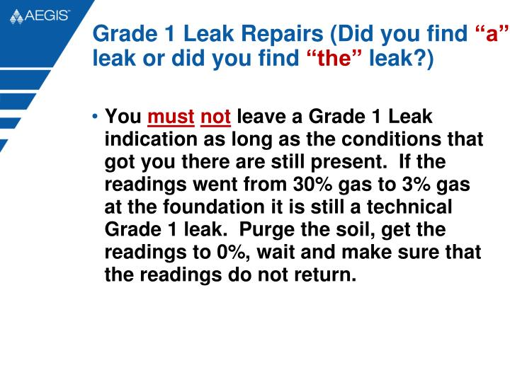 Grade 1 Leak Repairs (Did you find
