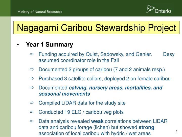 Nagagami Caribou Stewardship Project