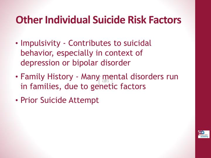Other Individual Suicide Risk Factors